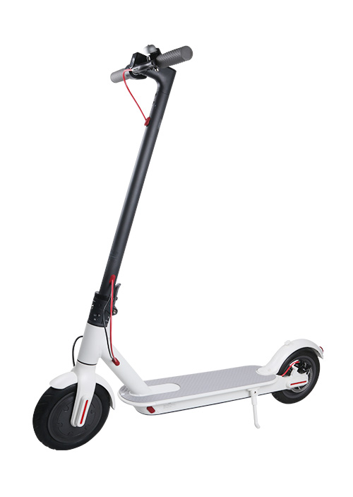 Electric Scooter S004