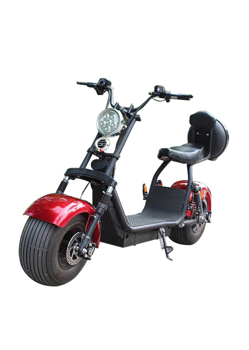 18inch Fat Tire Coco City Electric Scooter X5