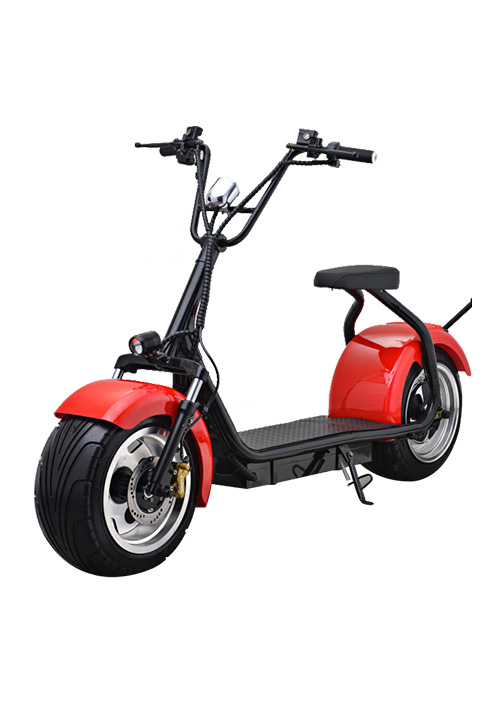 1000W Fat Tyre Two Wheels Scooter/Citycoco HB001