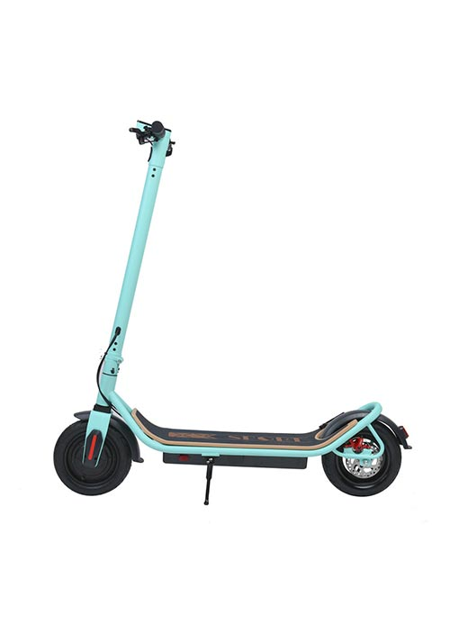 Electric Scooter Green S006