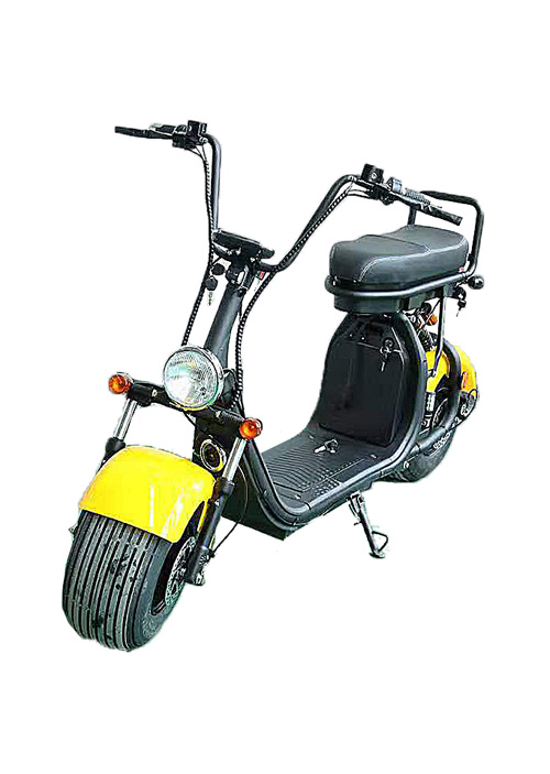 Two Big Wheel Powerfull Scooter/Citycoco EEC CP-1.3