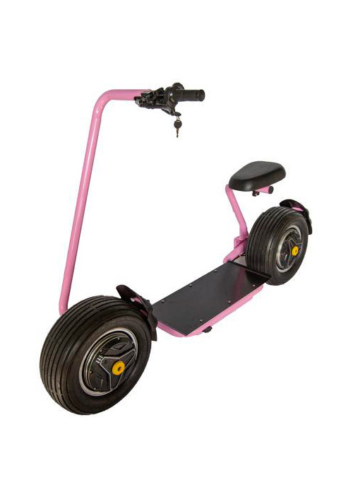 Self-Balancing Stator Electric Scooter GR-T1