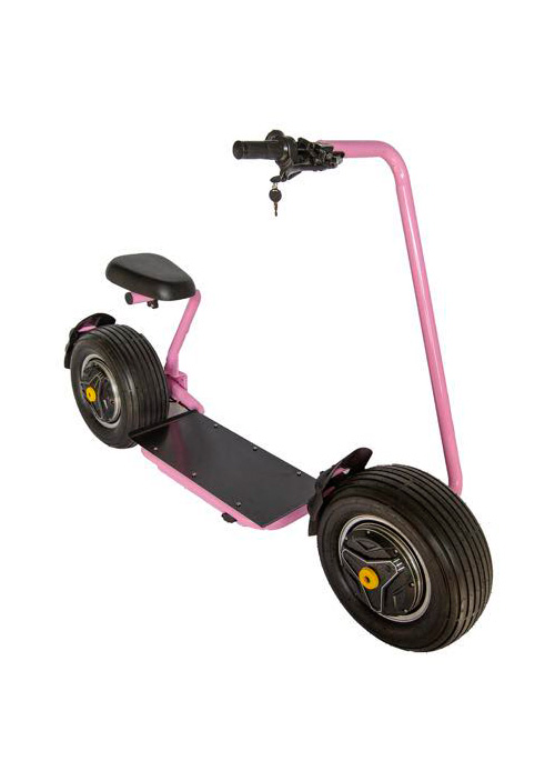 Electirc Scooter GR-T1